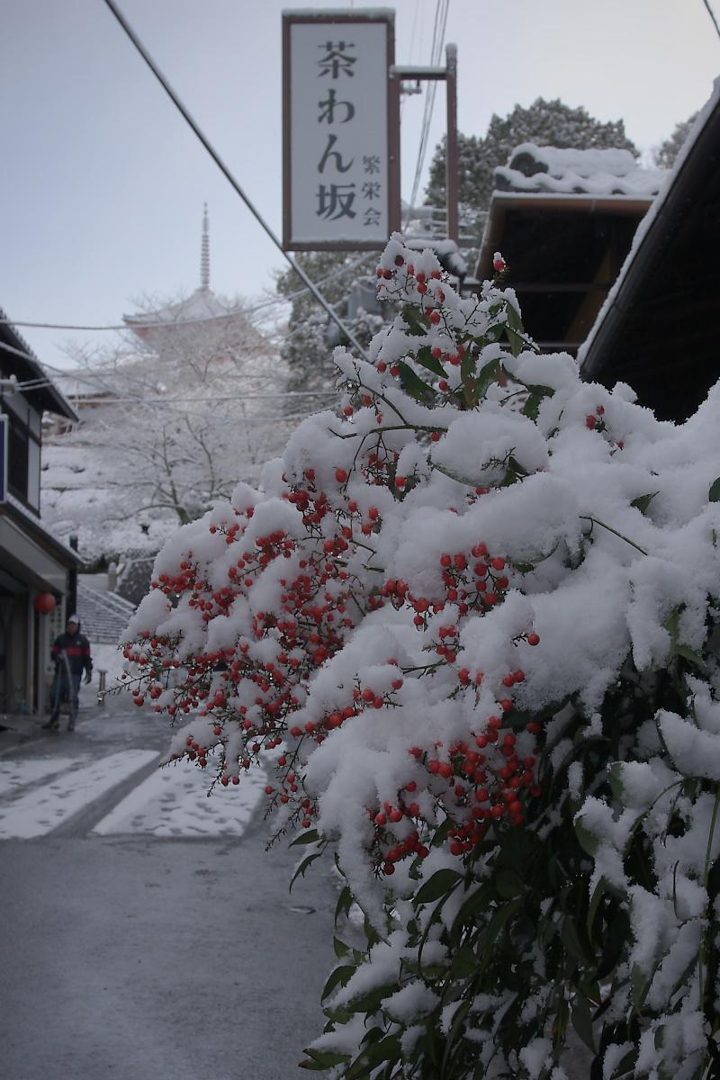 京都 雪景色 <東山> 1_f0021869_169824.jpg