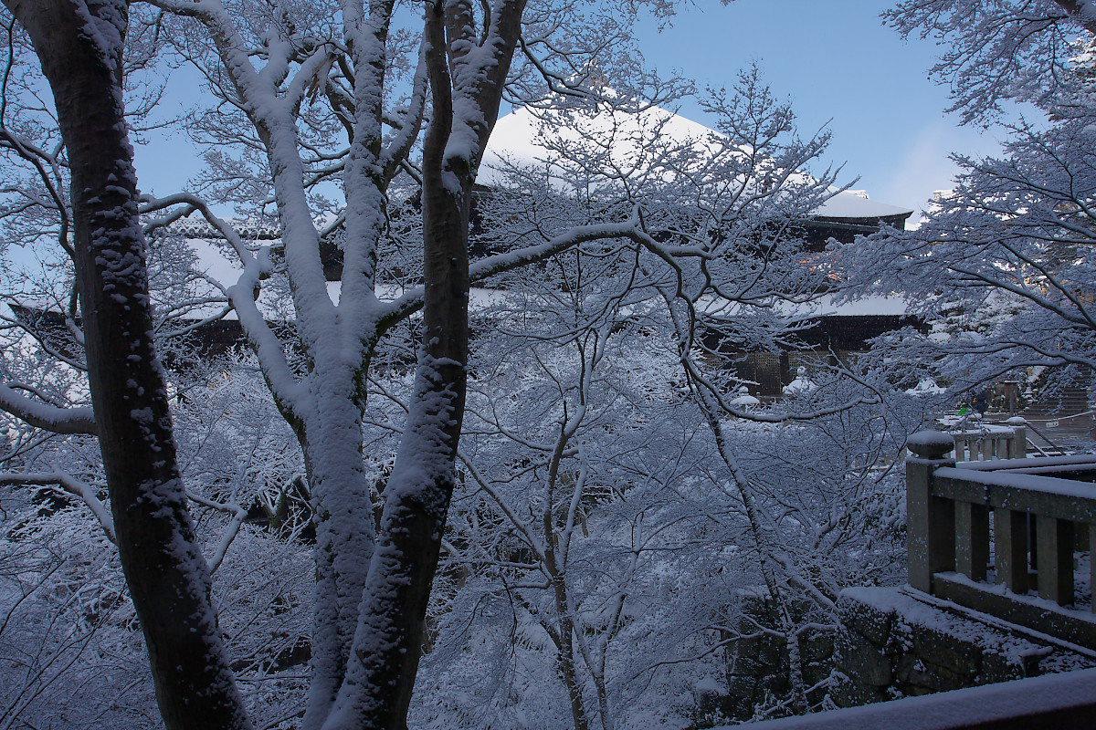 京都 雪景色 <東山> 5_f0021869_17492885.jpg