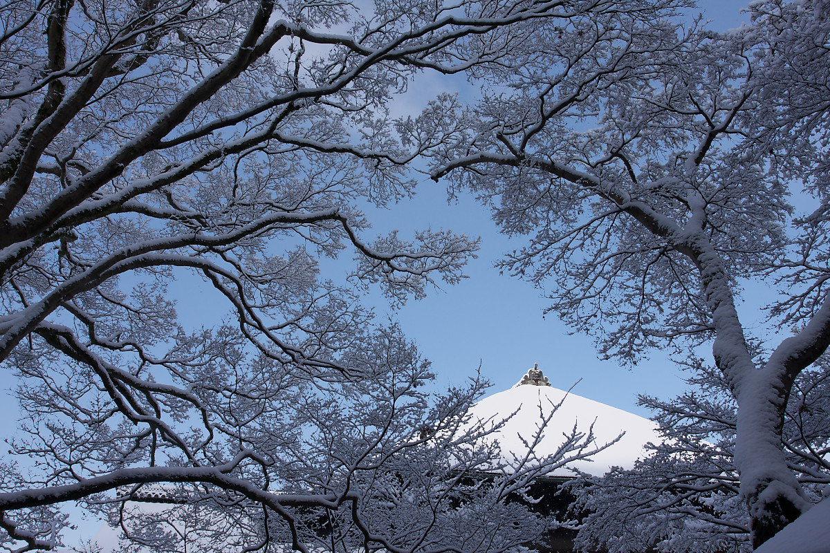 京都 雪景色 <東山> 5_f0021869_17494662.jpg