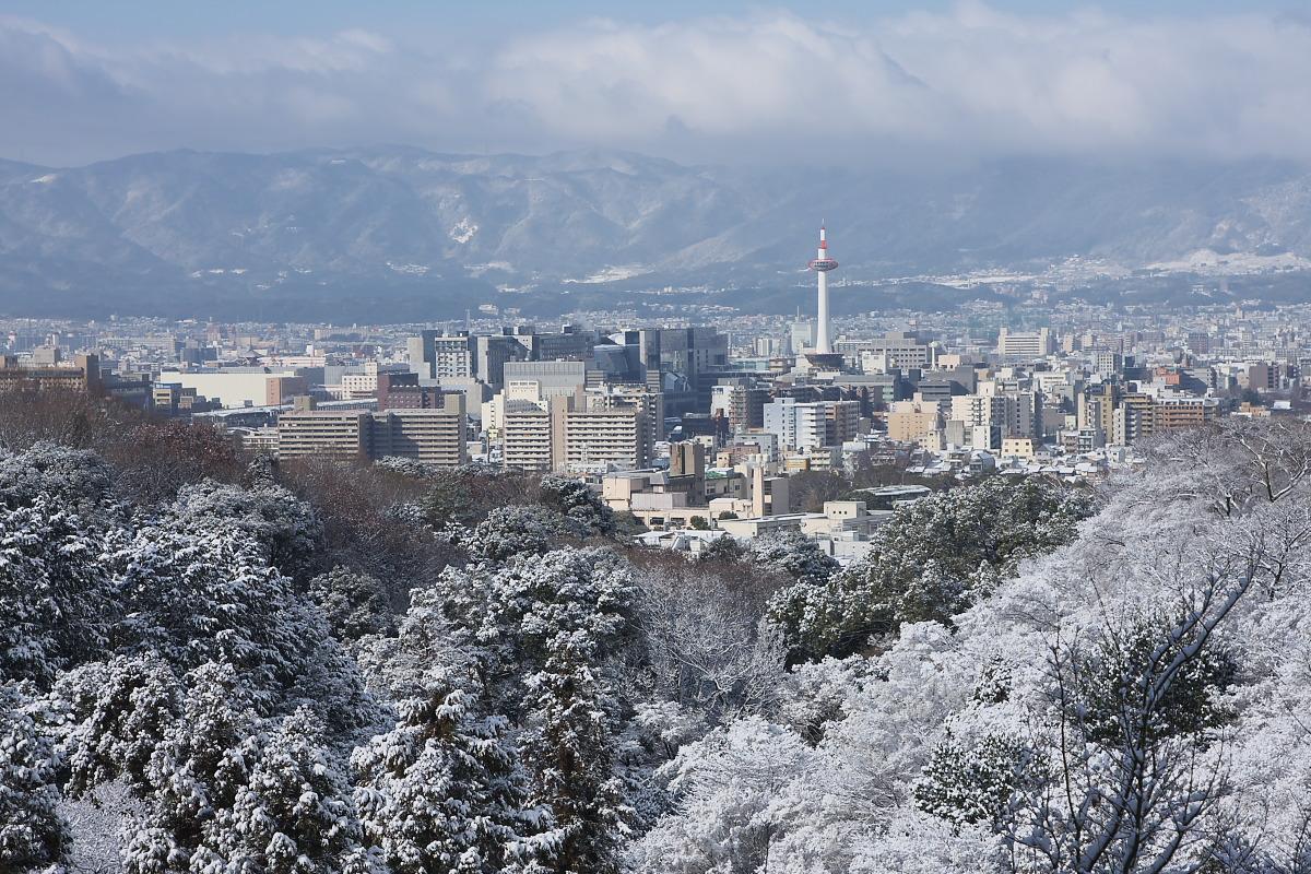 京都 雪景色 <東山> 5_f0021869_1756560.jpg