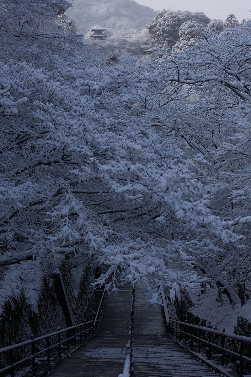 京都 雪景色 <東山> 5_f0021869_17581060.jpg