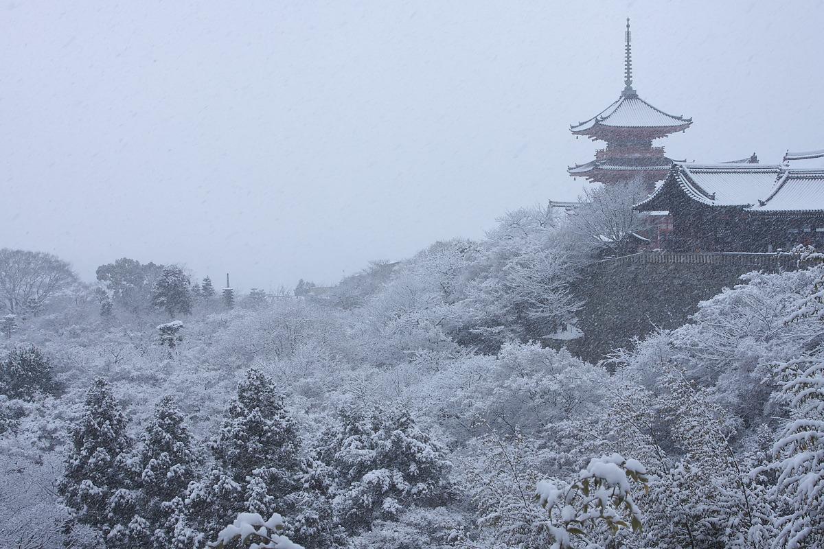京都 雪景色 <東山> 7_f0021869_18395527.jpg