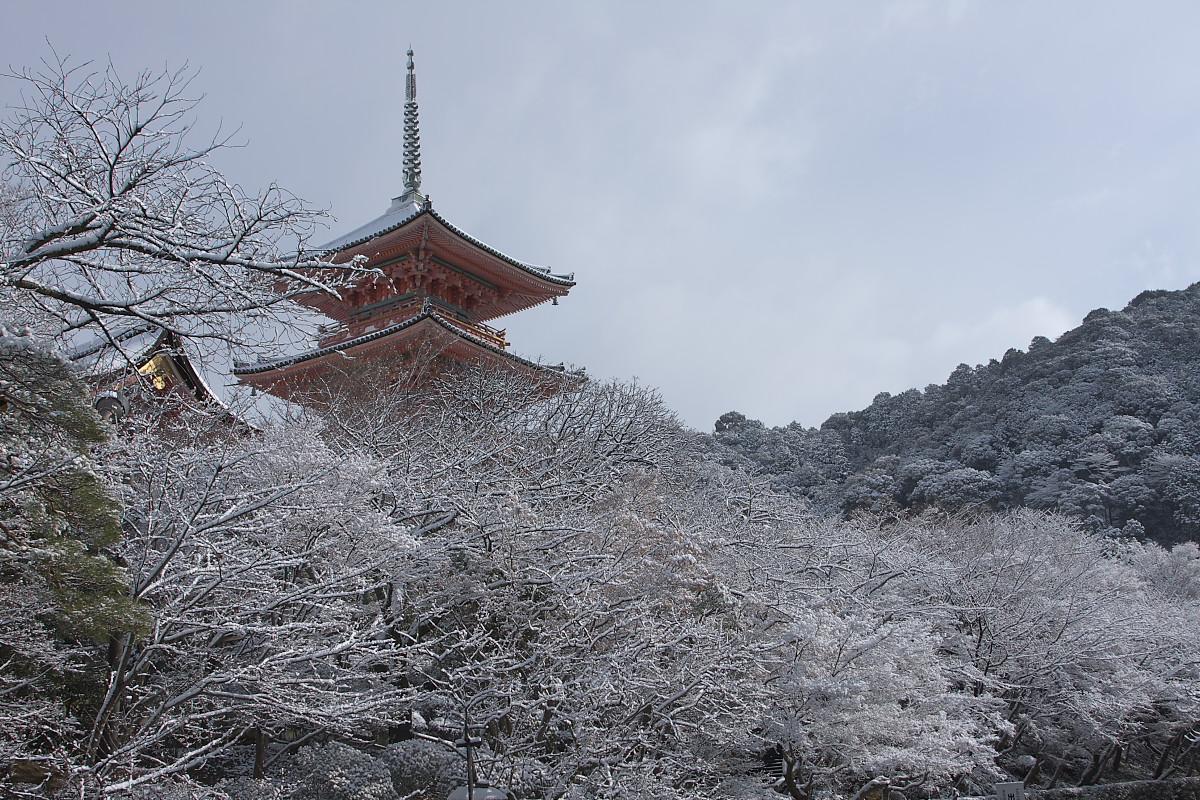 京都 雪景色 <東山> 7_f0021869_18414281.jpg