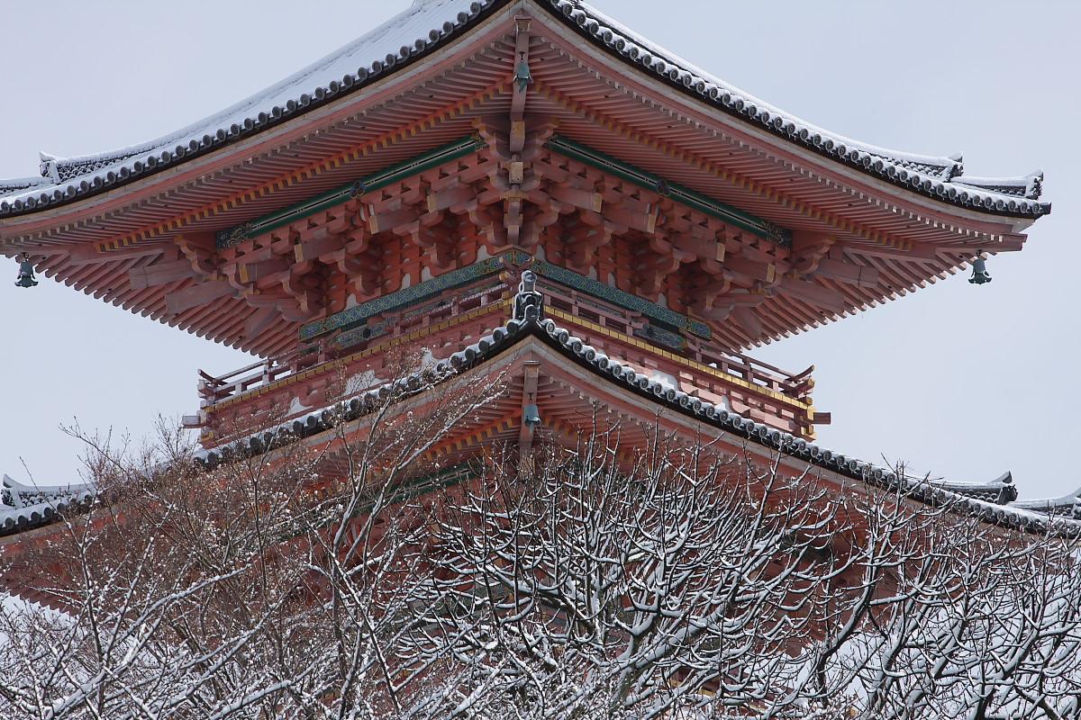京都 雪景色 <東山> 7_f0021869_18422081.jpg