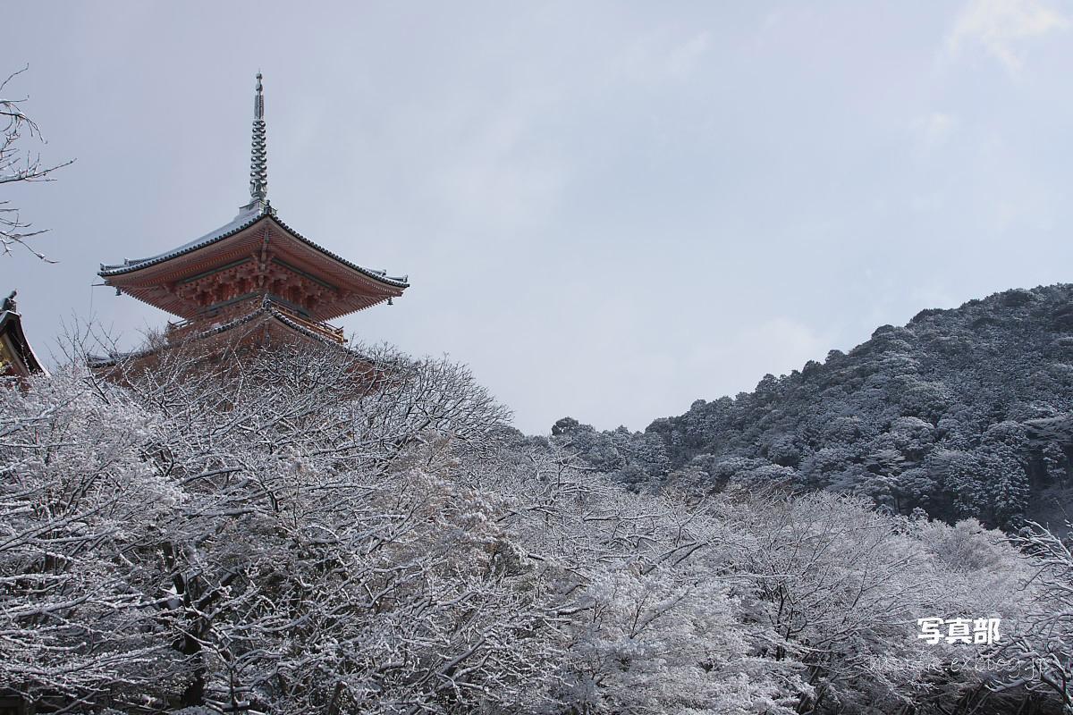 京都 雪景色 <東山> 7_f0021869_18433627.jpg