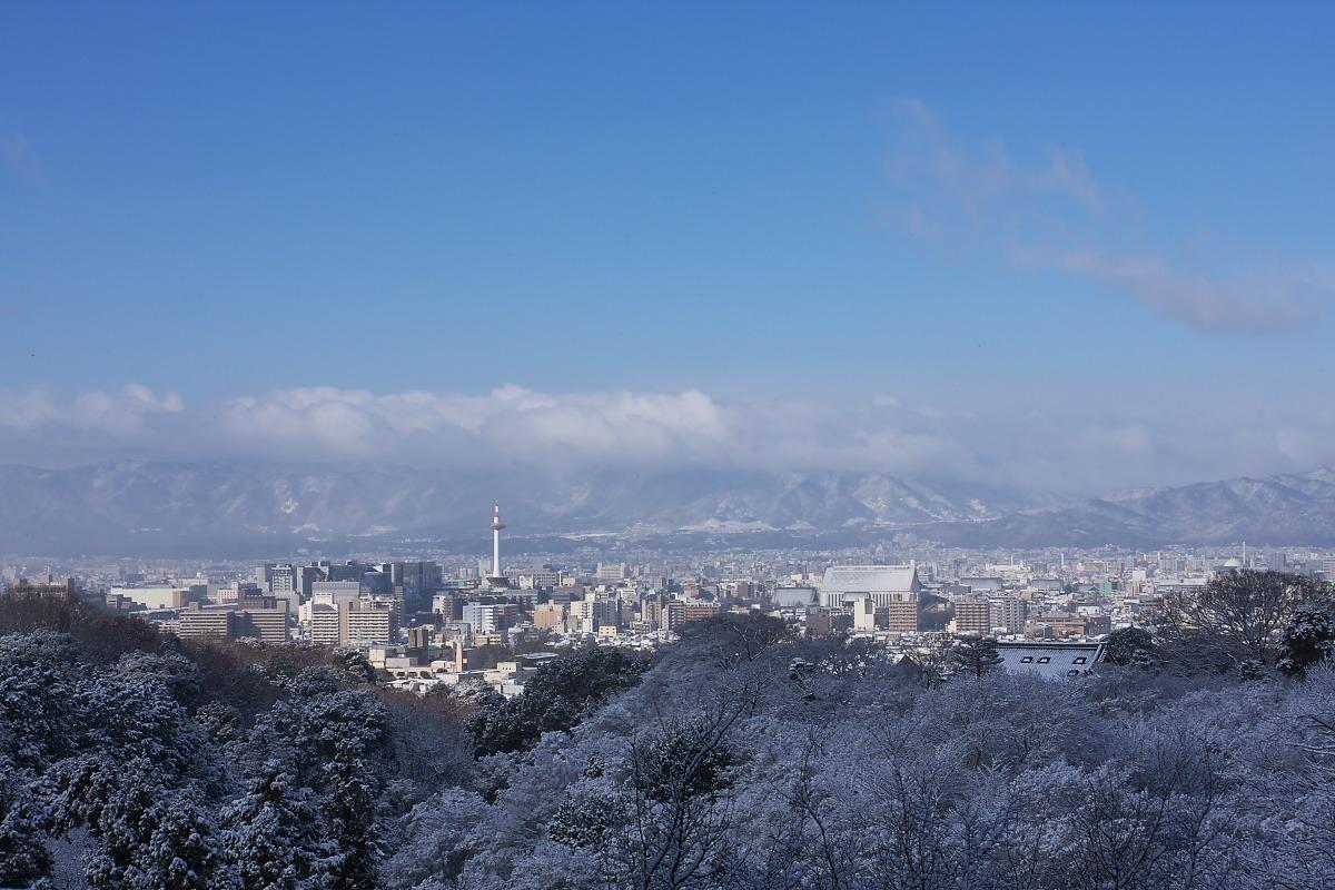 京都 雪景色 <東山> 5_f0021869_188519.jpg