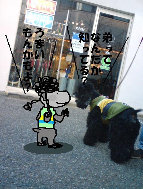 f0096569_1458551.jpg