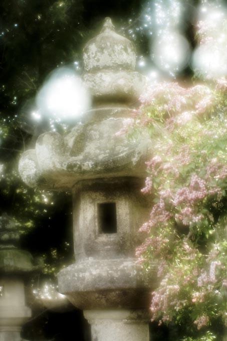 春を探しに_c0150383_19551945.jpg
