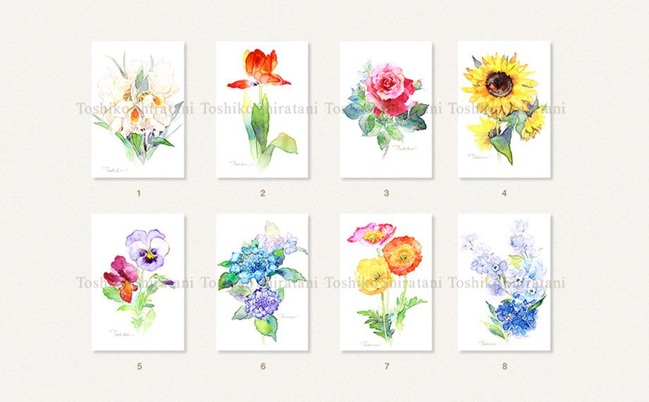 Postcard・Toshiko  1枚 ¥220(税込)_d0130688_1217282.jpg
