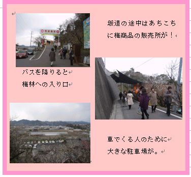 和歌山 南部(みなべ)梅林へ _a0084343_16185725.jpg