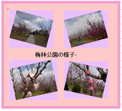 和歌山 南部(みなべ)梅林へ _a0084343_16193671.jpg