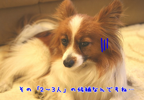 d0013149_0513142.jpg