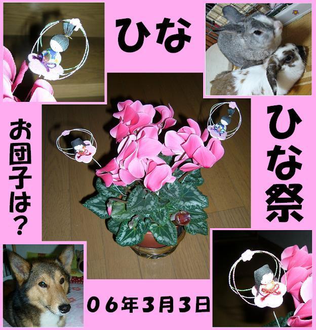 d0032004_2165770.jpg