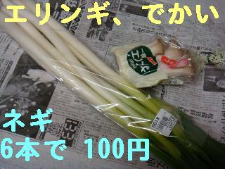 f0138304_1883019.jpg