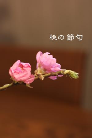 f0065106_2041185.jpg