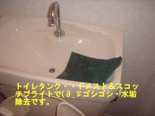 f0031037_17423144.jpg