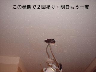 f0031037_1746154.jpg