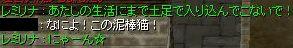 e0126242_22312321.jpg