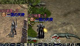 f0140642_2033754.jpg