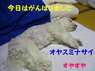 f0145192_1633576.jpg