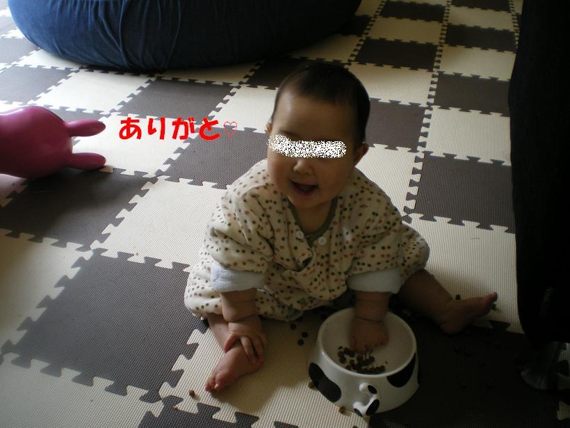 c0141900_913625.jpg