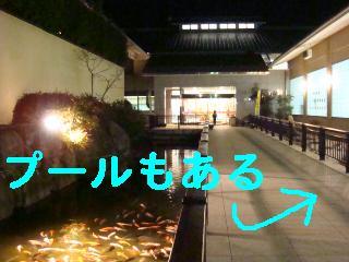 f0138304_1034619.jpg