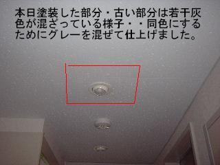 f0031037_2117819.jpg
