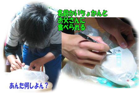 f0082367_1663387.jpg