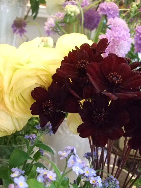 オークリーフ(春、ミモザの季節)_f0049672_14342591.jpg