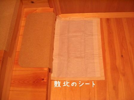 f0068501_013732.jpg