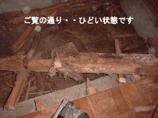 f0031037_16403231.jpg