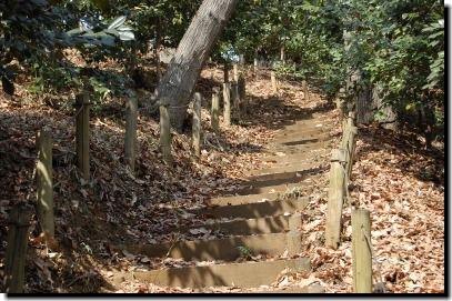 椿園の階段