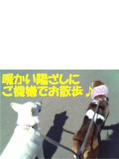 f0121712_10312122.jpg