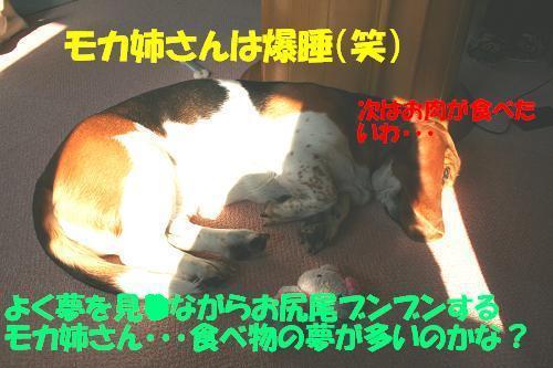 f0121712_11112852.jpg