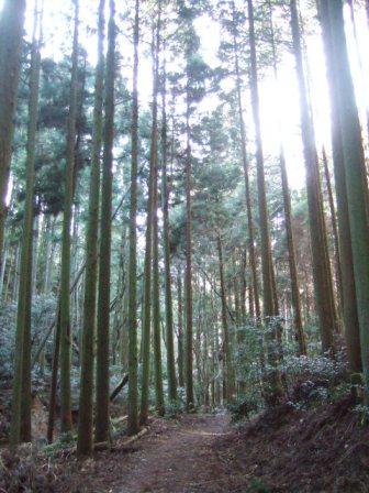 休日、山に行ってきました!_c0144020_010699.jpg