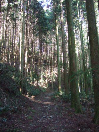 休日、山に行ってきました!_c0144020_0124617.jpg