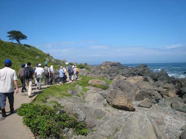 種差海岸がエコウォーク百選に認定!_e0132433_1957874.jpg