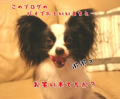 d0013149_9303176.jpg