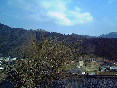 梅の木に思う_c0060919_18312186.jpg