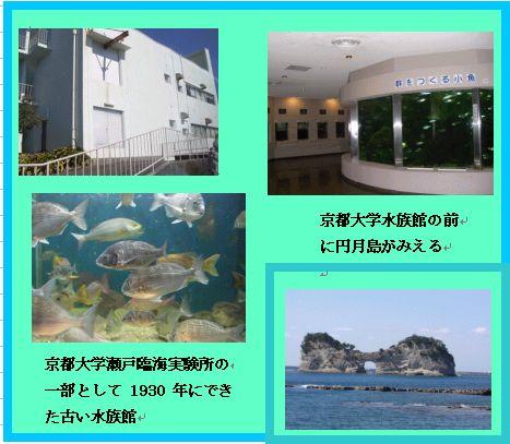 和歌山 白浜 白良浜 千畳敷 三段壁 _a0084343_16271373.jpg