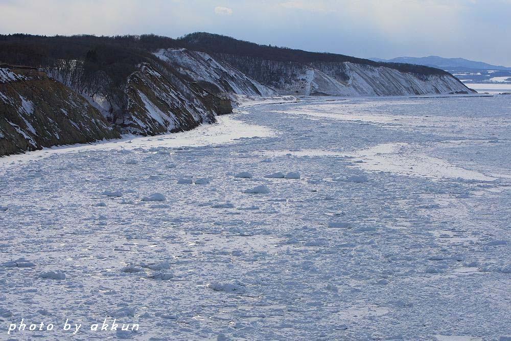 冬も終わりに近いネイちゃん画像より~_a0039860_20495698.jpg