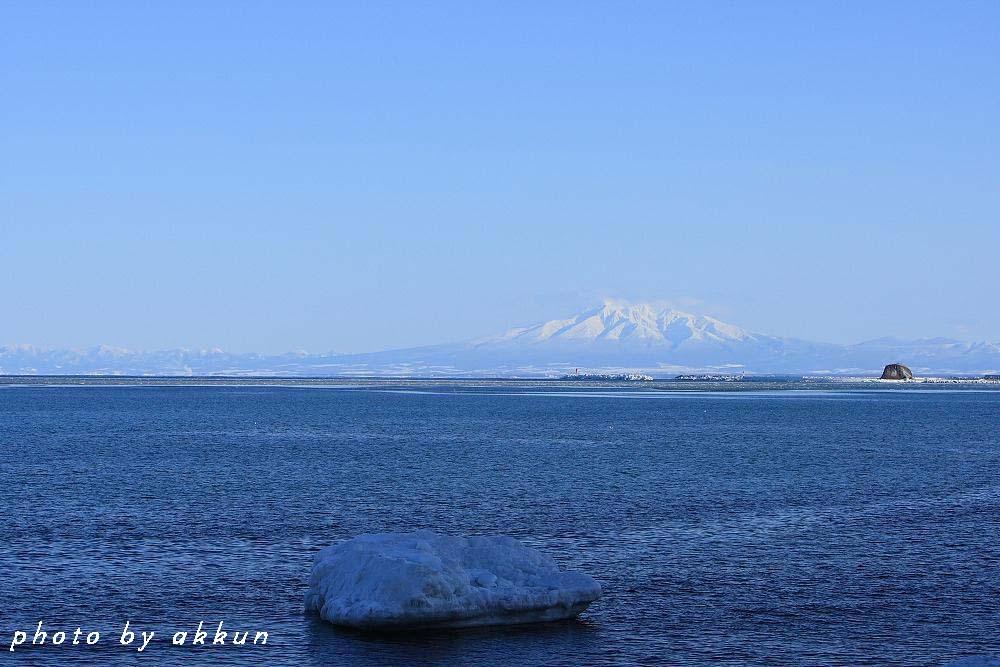 冬も終わりに近いネイちゃん画像より~_a0039860_20504473.jpg