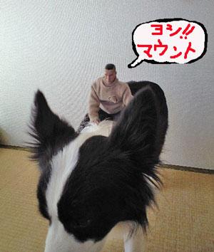 f0132070_16521344.jpg