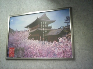 「桜」まもなく・・・_a0076495_16585154.jpg