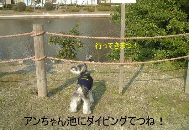 d0079701_2111432.jpg
