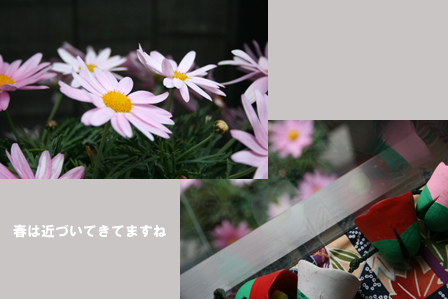 a0093825_9211233.jpg