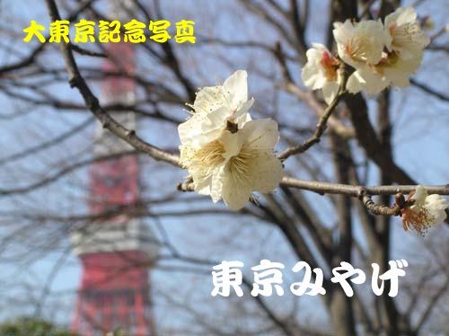 f0024274_12333888.jpg