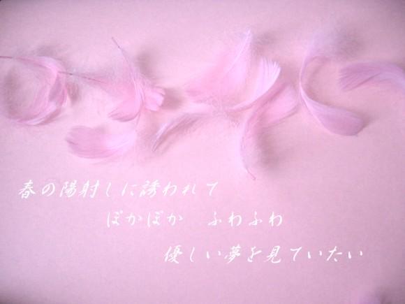 f0156895_194219.jpg