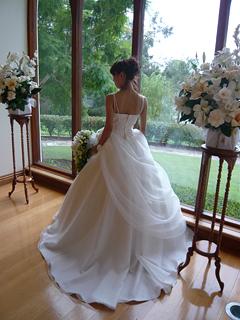 蓮花、結婚す? のまき_c0140103_22293298.jpg