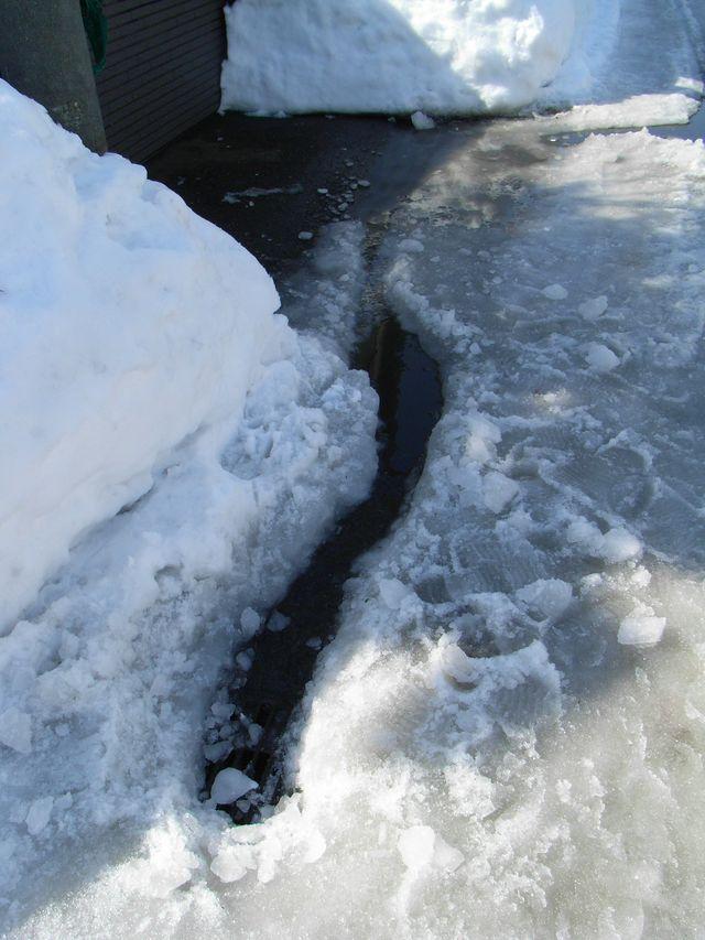 雪解け進む _c0025115_23431340.jpg